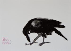 "50. Crow: 7""x10"""
